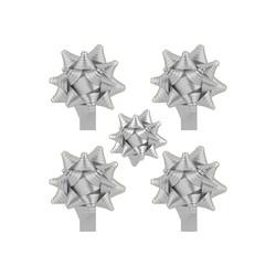 Karışık Renkli Kutup Yıldızı Fiyonk - Thumbnail