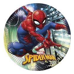 - Spiderman Team Up Karton Tabak 23 cm 8'li